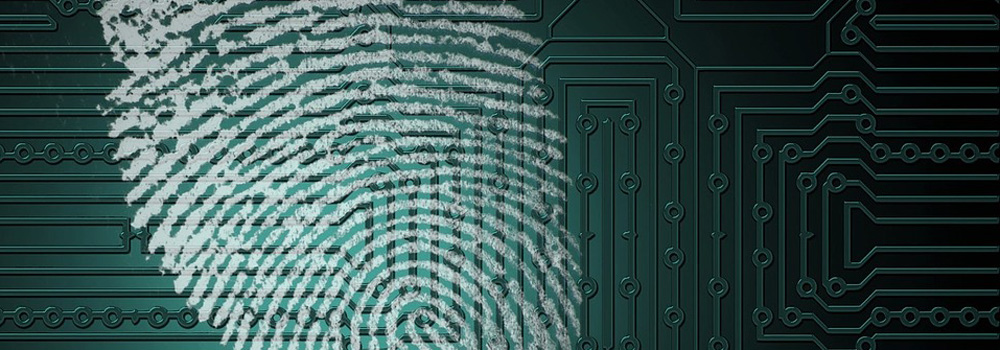 Finger prints have many similarities to a secure hashes